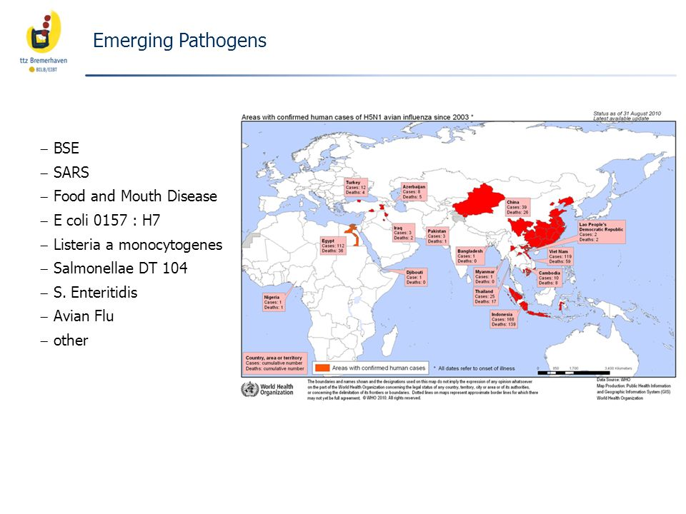 Emerging Pathogens BSE SARS Food and Mouth Disease E coli 0157 : H7