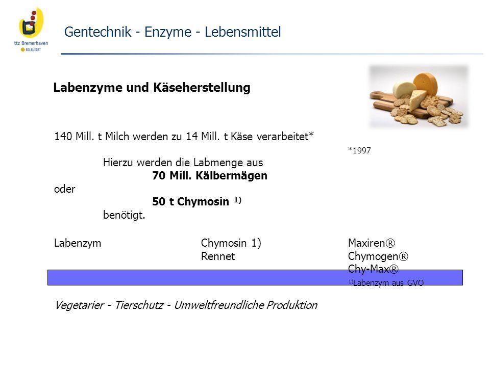 Gentechnik - Enzyme - Lebensmittel