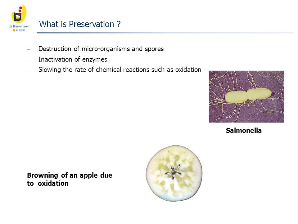 What is Preservation Destruction of micro-organisms and spores