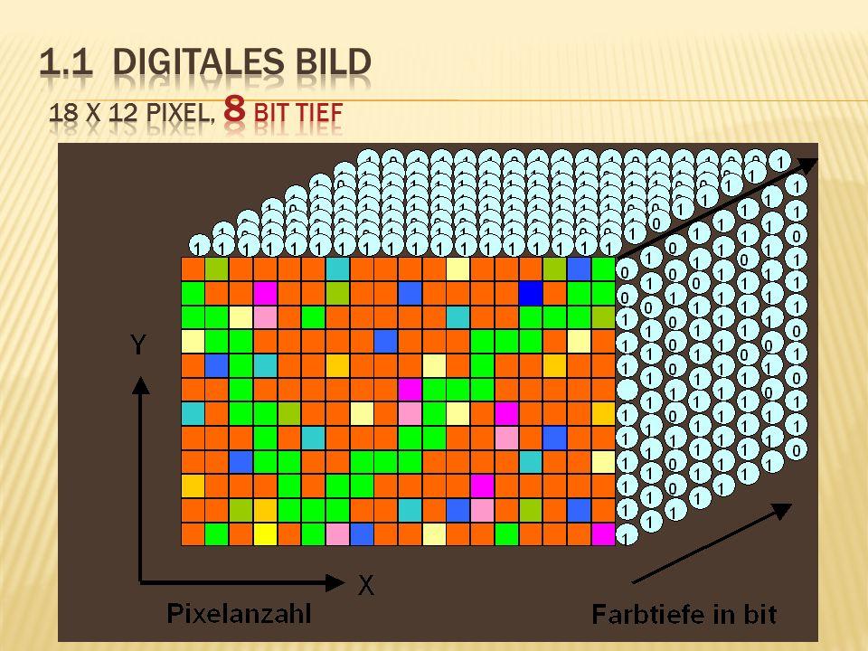 1.1 Digitales Bild 18 x 12 Pixel, 8 bit tief