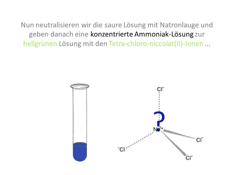Nun neutralisieren wir die saure Lösung mit Natronlauge und geben danach eine konzentrierte Ammoniak-Lösung zur hellgrünen Lösung mit den Tetra-chloro-niccolat(II)-Ionen ...