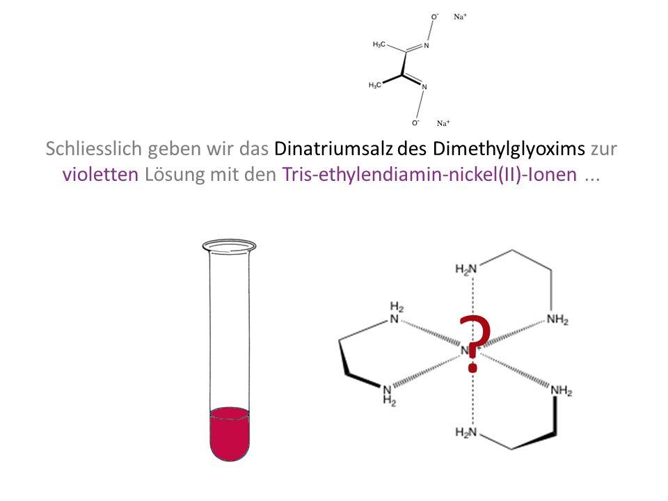Schliesslich geben wir das Dinatriumsalz des Dimethylglyoxims zur violetten Lösung mit den Tris-ethylendiamin-nickel(II)-Ionen ...