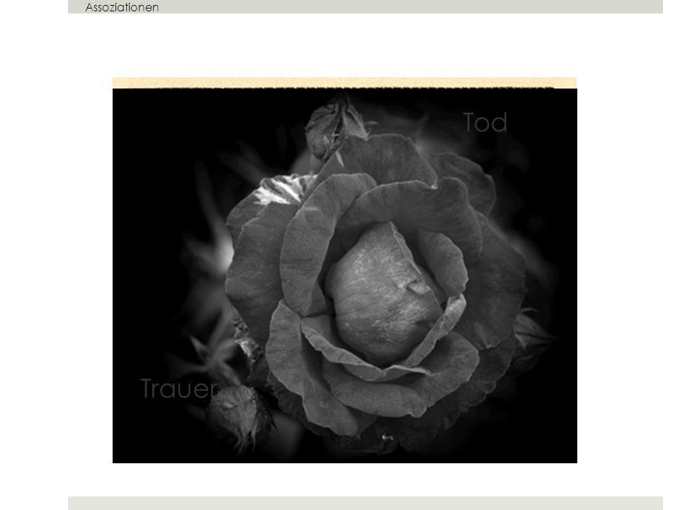 Assoziationen Tod Trauer Der Tod – Trauer – Rose der Trauer