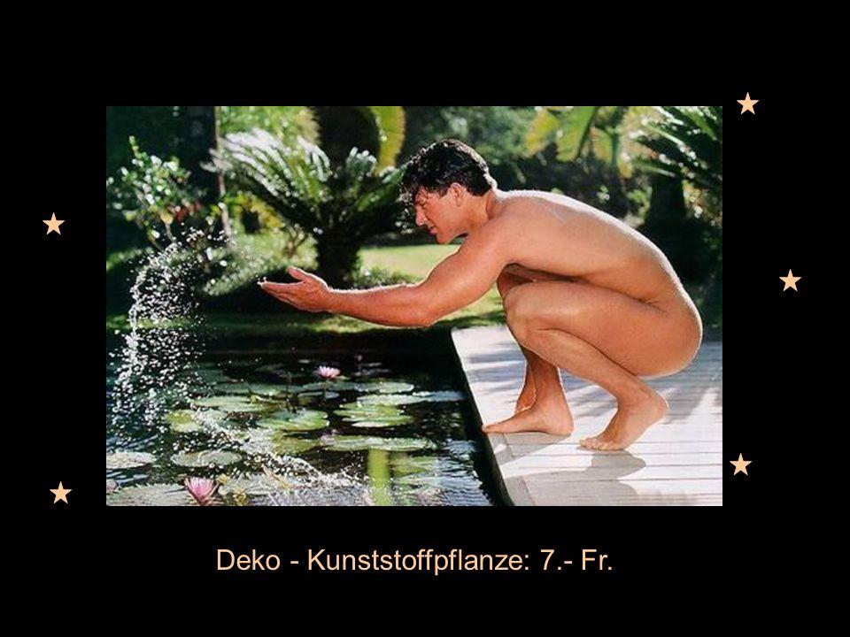 Deko - Kunststoffpflanze: 7.- Fr.