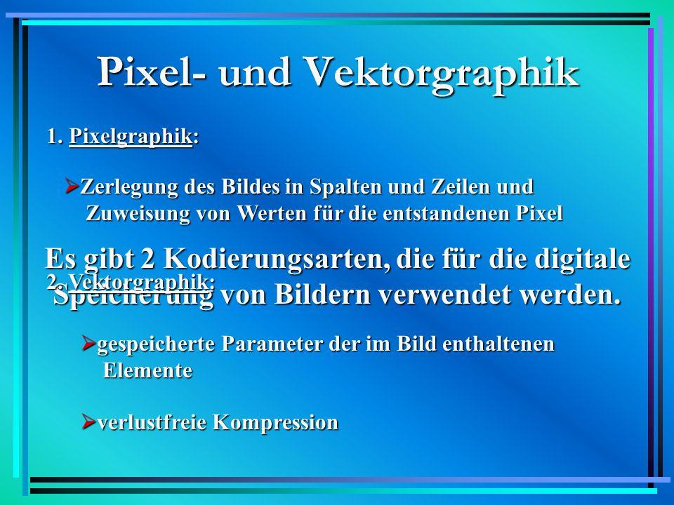 Pixel- und Vektorgraphik