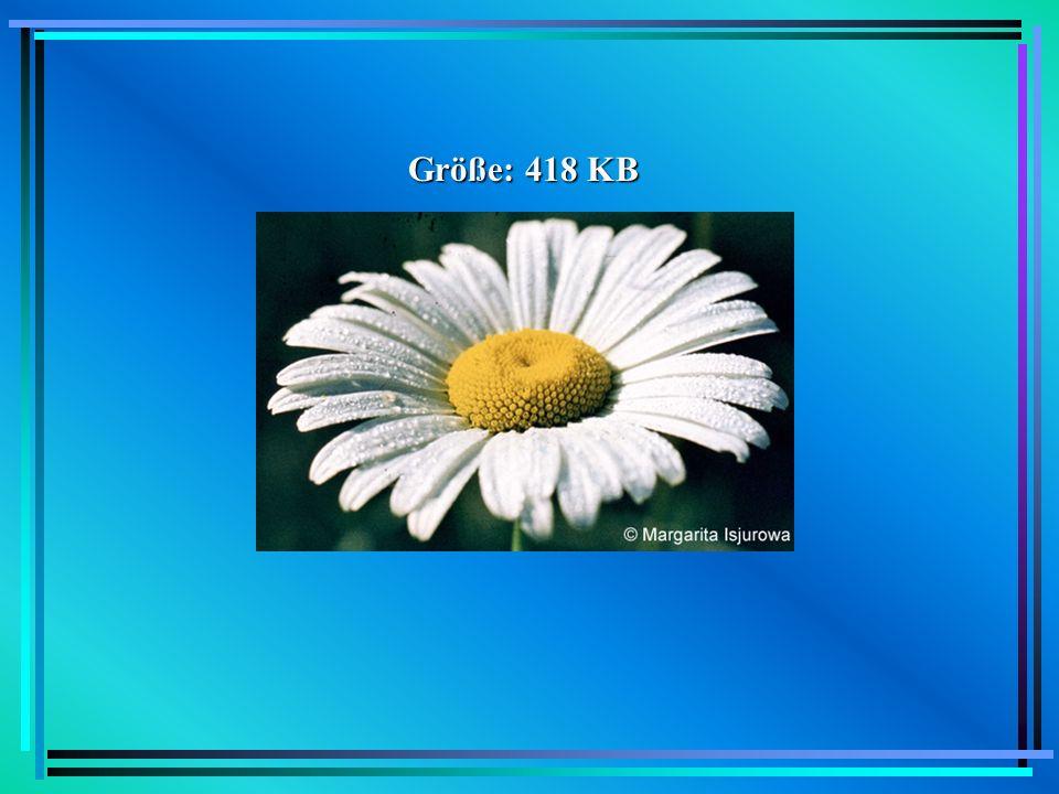 Größe: 418 KB Beispiel