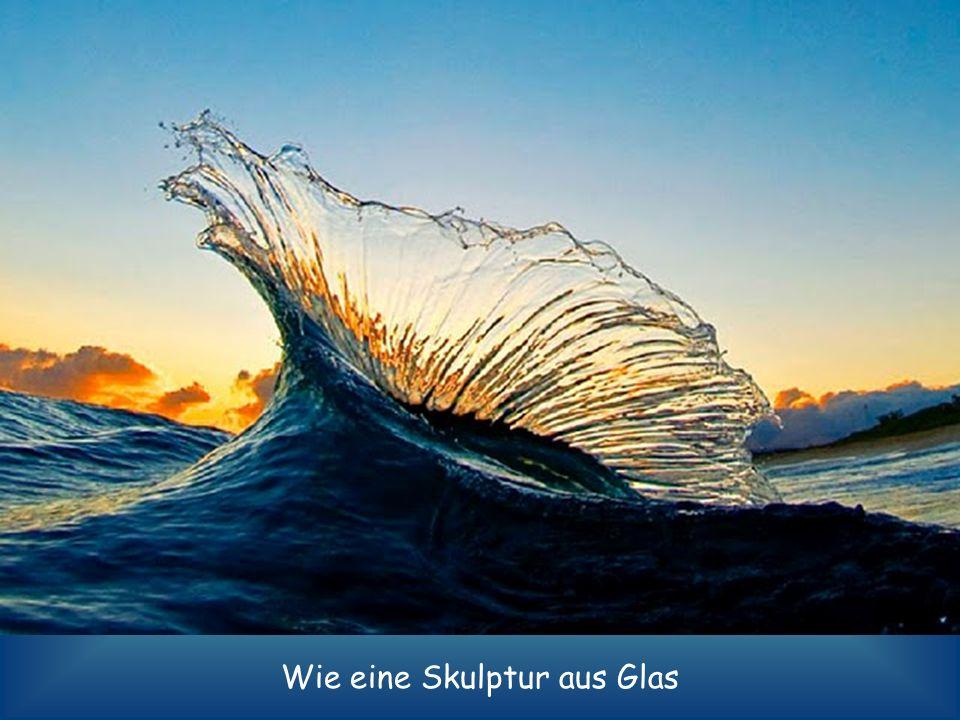 Wie eine Skulptur aus Glas