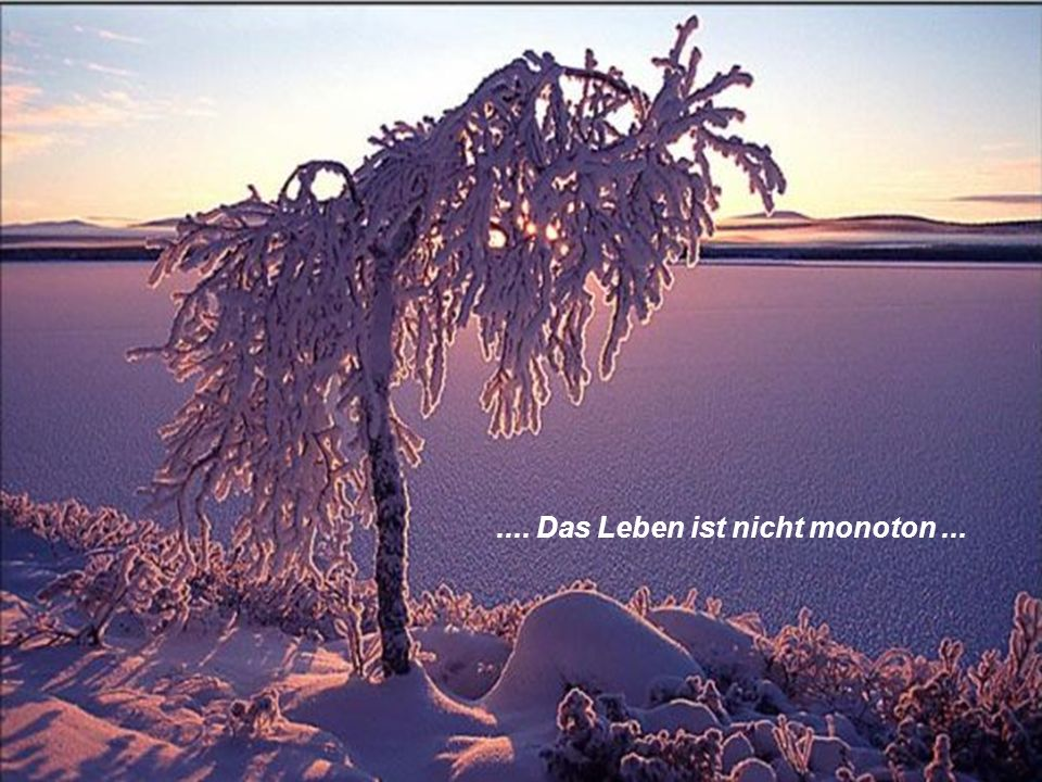 .... Das Leben ist nicht monoton ...