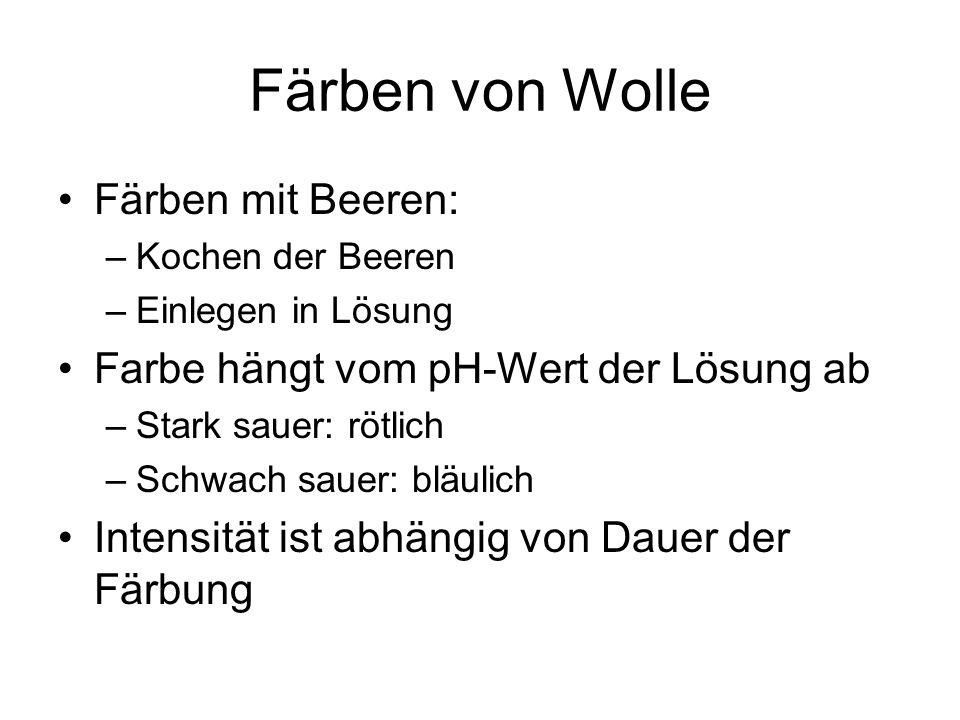 Färben von Wolle Färben mit Beeren: