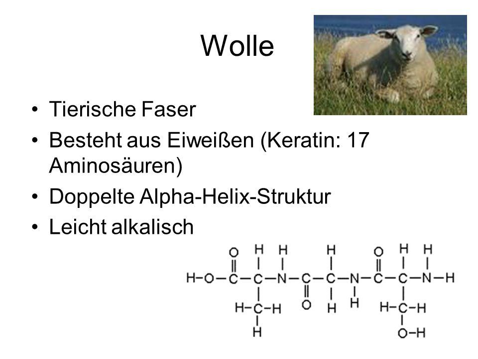 Wolle Tierische Faser Besteht aus Eiweißen (Keratin: 17 Aminosäuren)