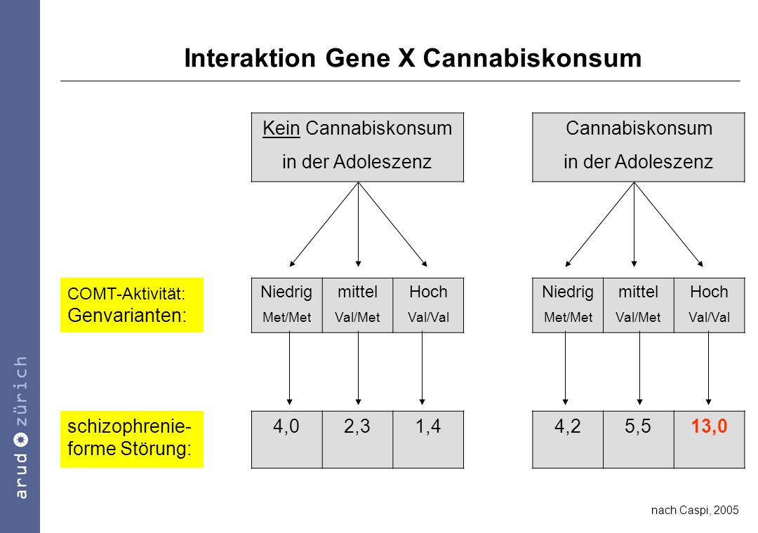 Interaktion Gene X Cannabiskonsum