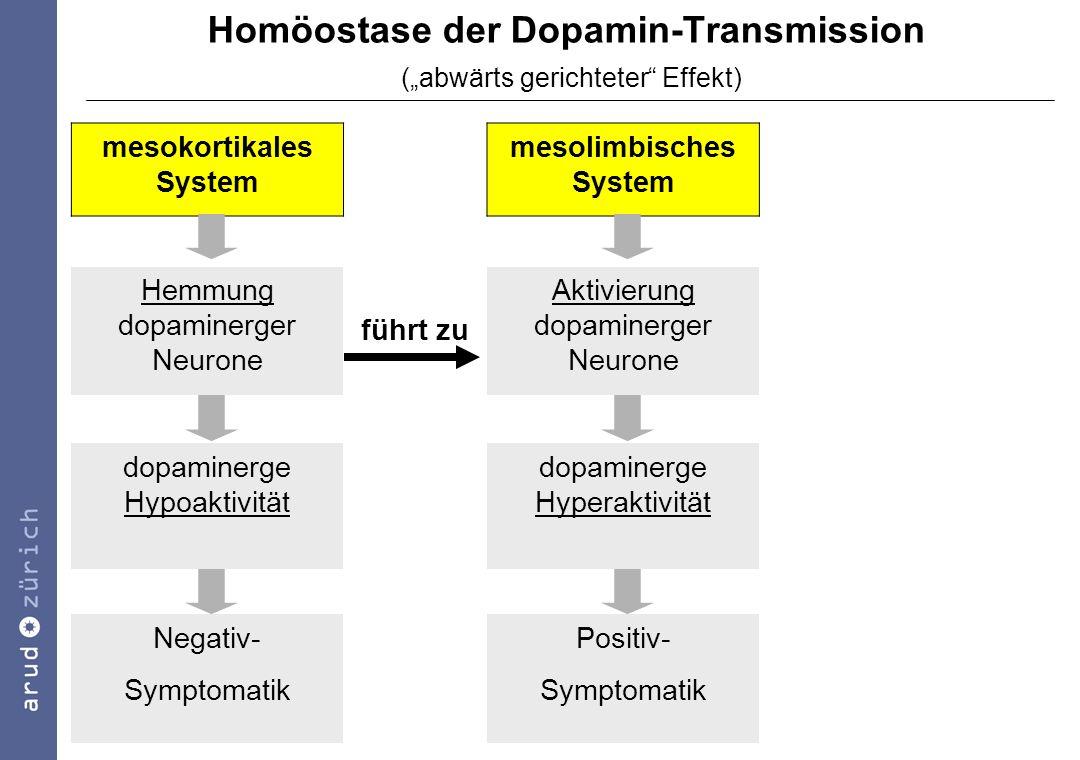 """Homöostase der Dopamin-Transmission (""""abwärts gerichteter Effekt)"""