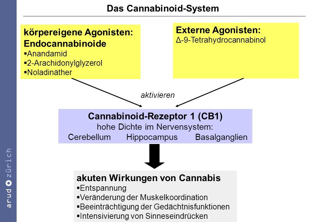Das Cannabinoid-System