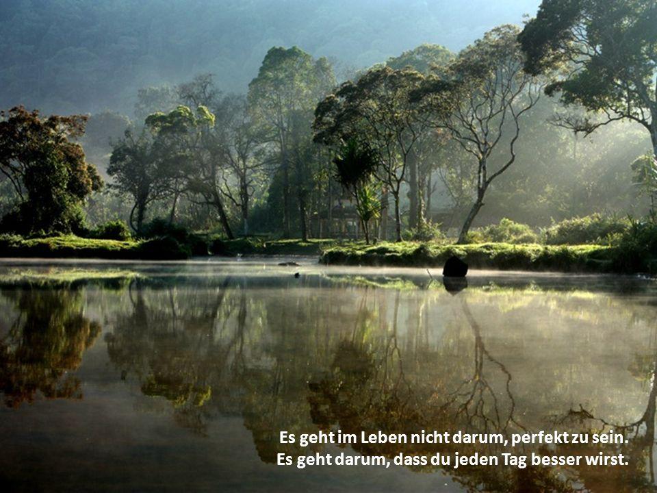 Es geht im Leben nicht darum, perfekt zu sein.