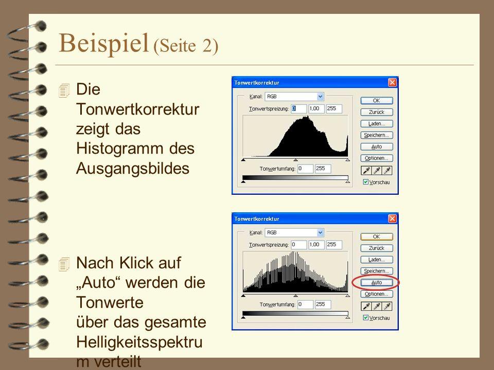 Beispiel (Seite 2) Die Tonwertkorrektur zeigt das Histogramm des Ausgangsbildes.