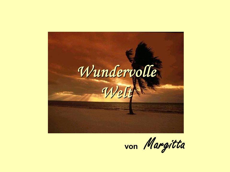 Wundervolle Welt von Margitta