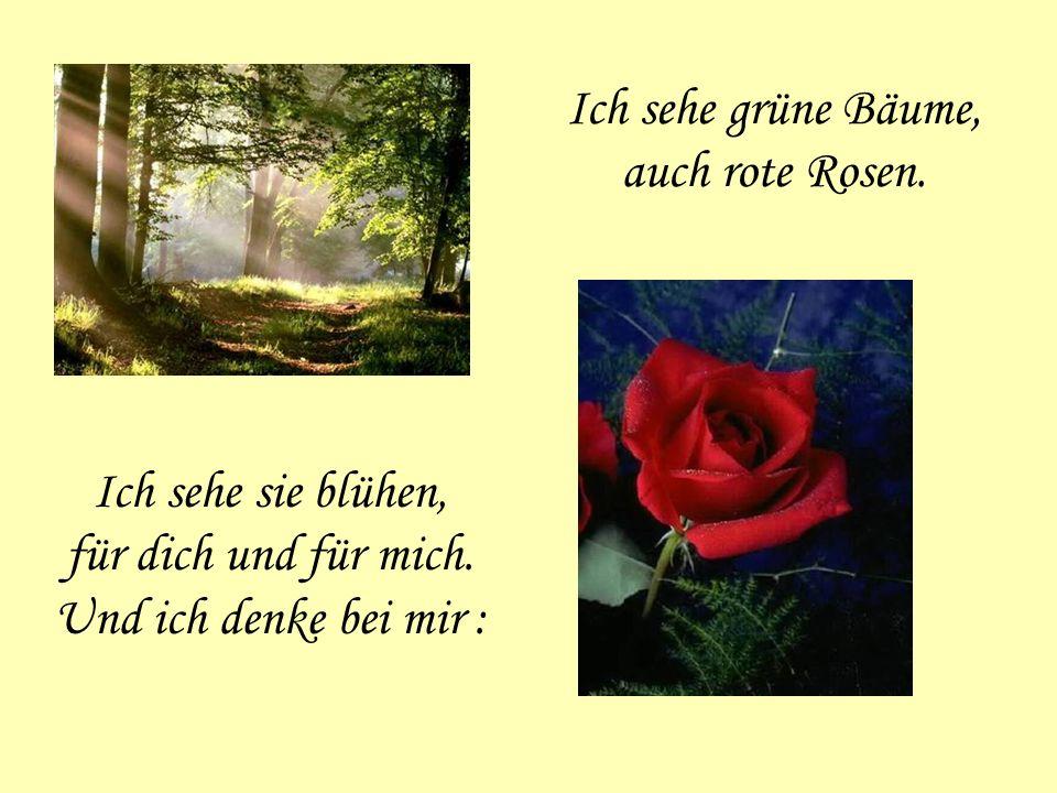 Ich sehe grüne Bäume, auch rote Rosen.