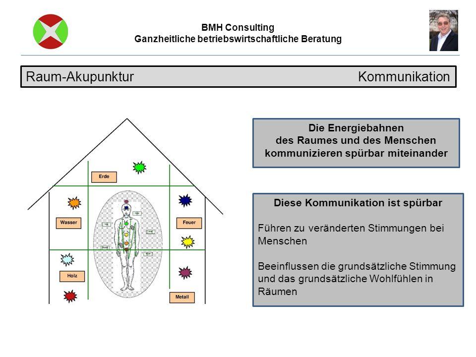 BMH Consulting Ganzheitliche betriebswirtschaftliche Beratung