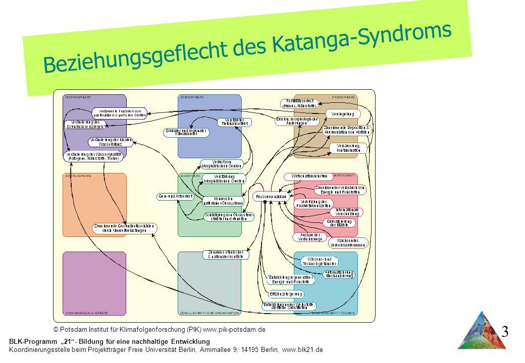 Beziehungsgeflecht des Katanga-Syndroms