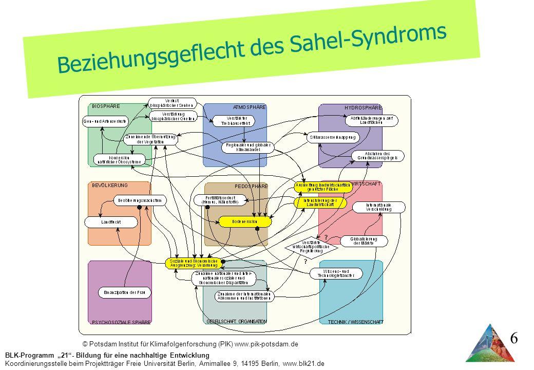 Beziehungsgeflecht des Sahel-Syndroms