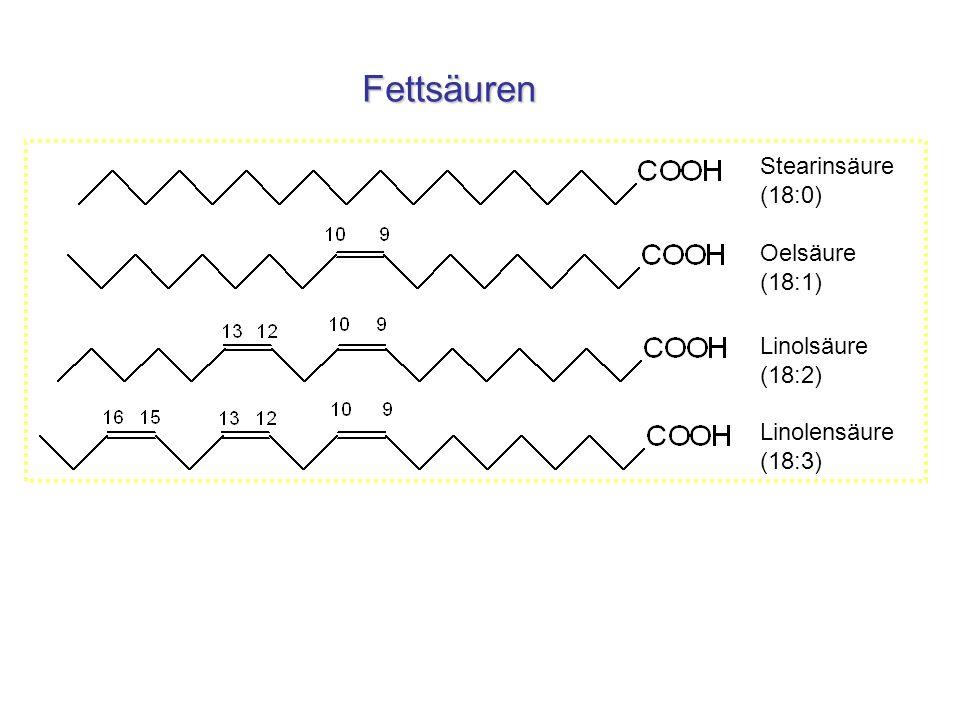 Fettsäuren Stearinsäure (18:0) Oelsäure (18:1)