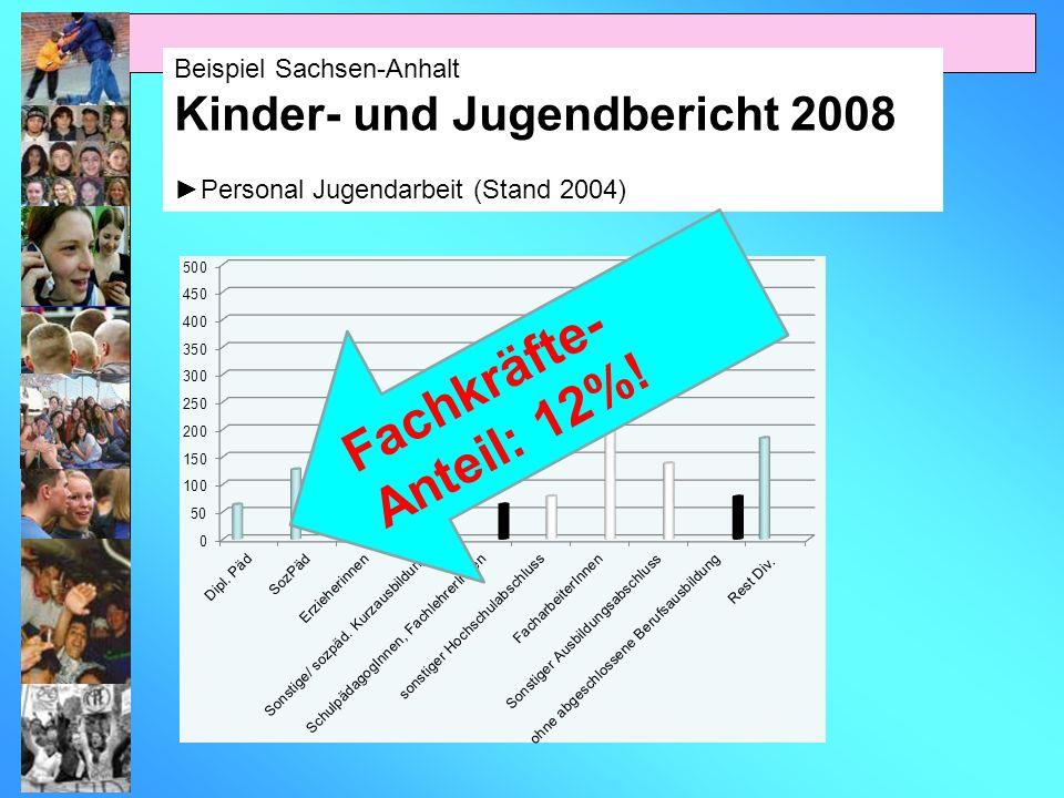 Fachkräfte-Anteil: 12%! Kinder- und Jugendbericht 2008
