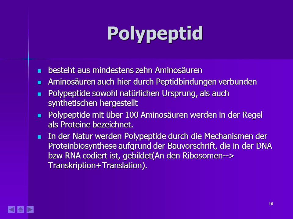 Polypeptid besteht aus mindestens zehn Aminosäuren