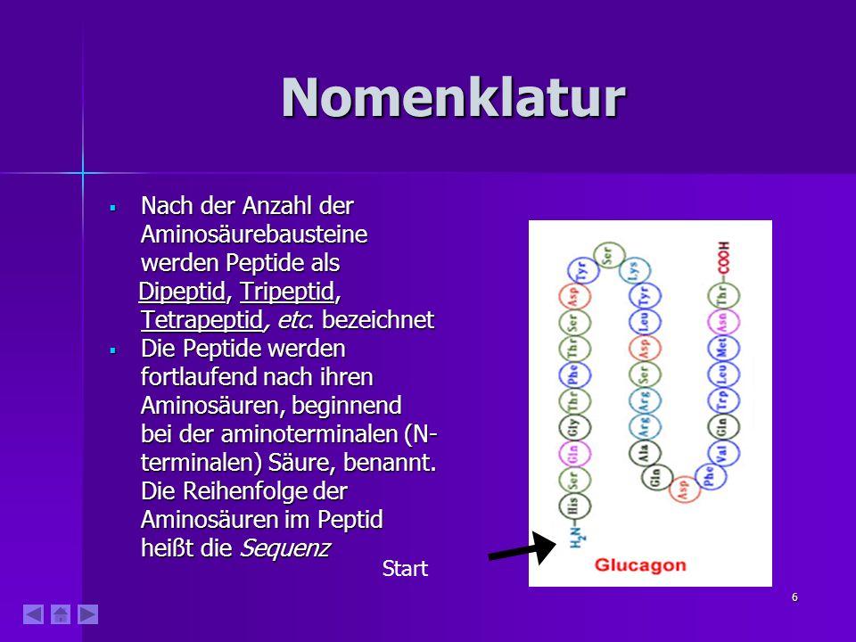 Nomenklatur Nach der Anzahl der Aminosäurebausteine werden Peptide als