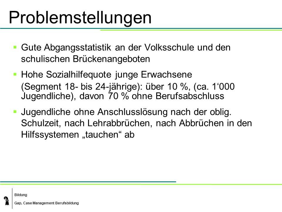 Problemstellungen Gute Abgangsstatistik an der Volksschule und den schulischen Brückenangeboten. Hohe Sozialhilfequote junge Erwachsene.