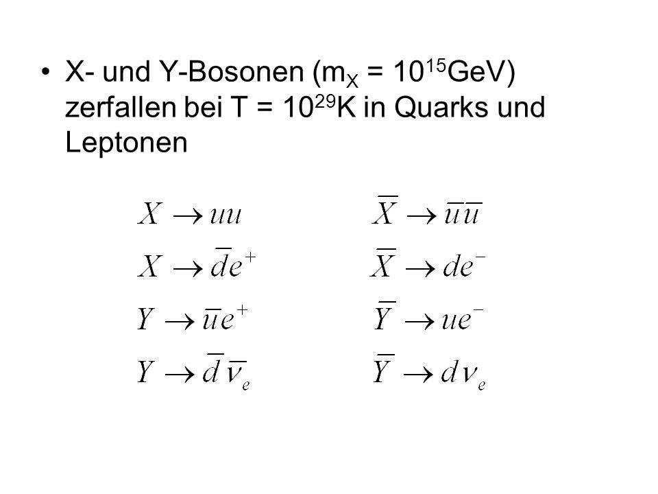 X- und Y-Bosonen (mX = 1015GeV) zerfallen bei T = 1029K in Quarks und Leptonen
