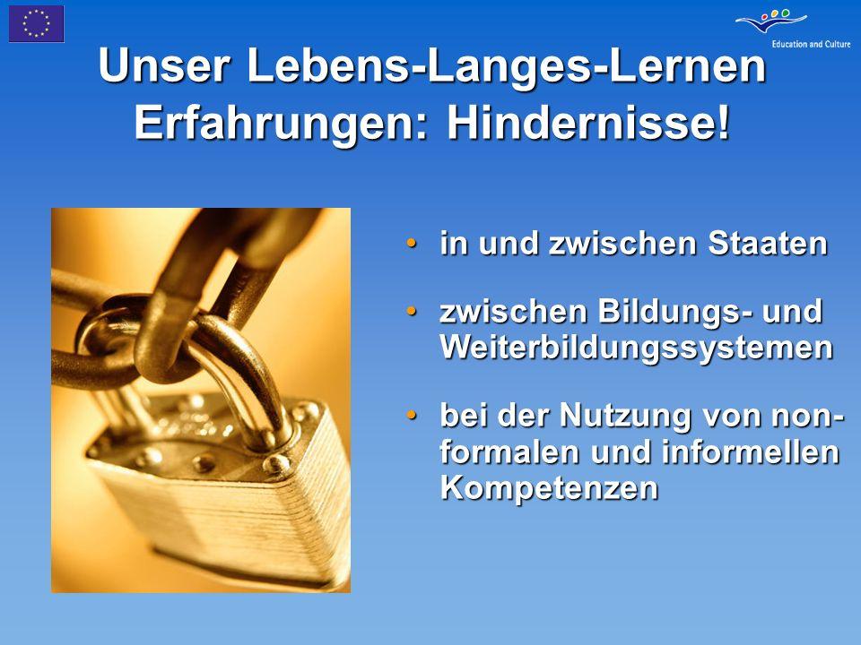 Unser Lebens-Langes-Lernen Erfahrungen: Hindernisse!