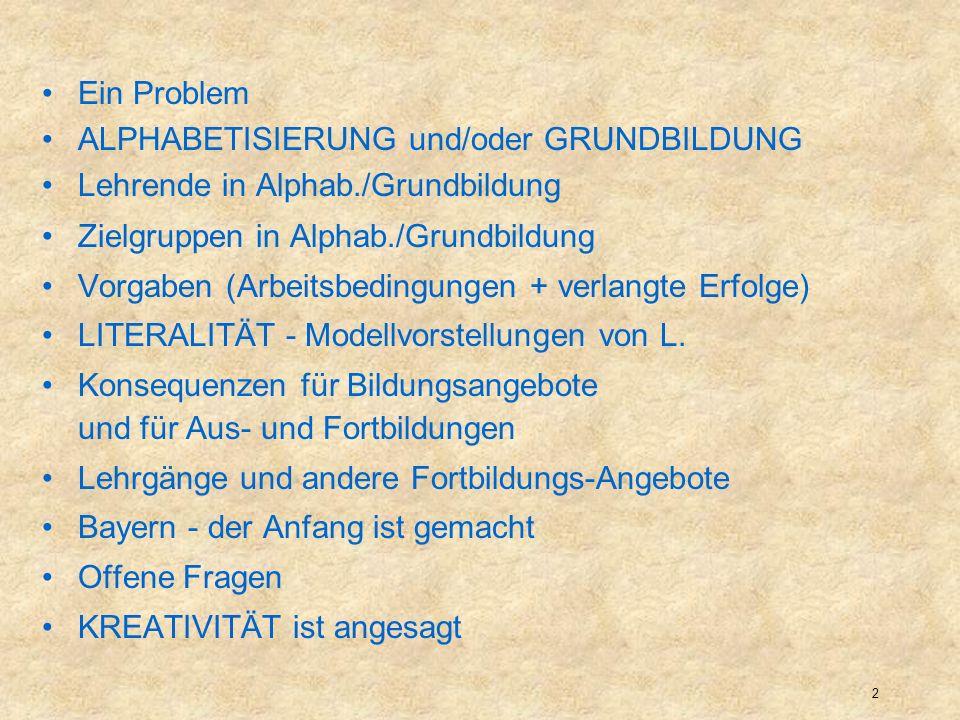Ein ProblemALPHABETISIERUNG und/oder GRUNDBILDUNG. Lehrende in Alphab./Grundbildung. Zielgruppen in Alphab./Grundbildung.