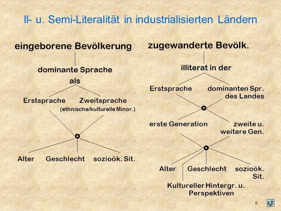 Il- u. Semi-Literalität in industrialisierten Ländern