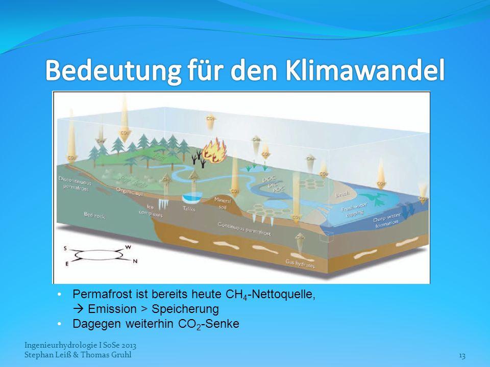 Bedeutung für den Klimawandel