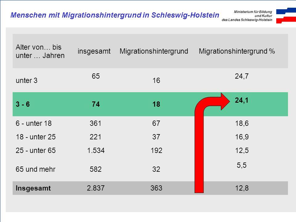 Menschen mit Migrationshintergrund in Schleswig-Holstein