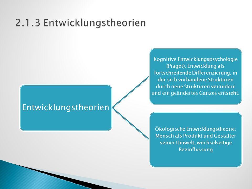 2.1.3 Entwicklungstheorien