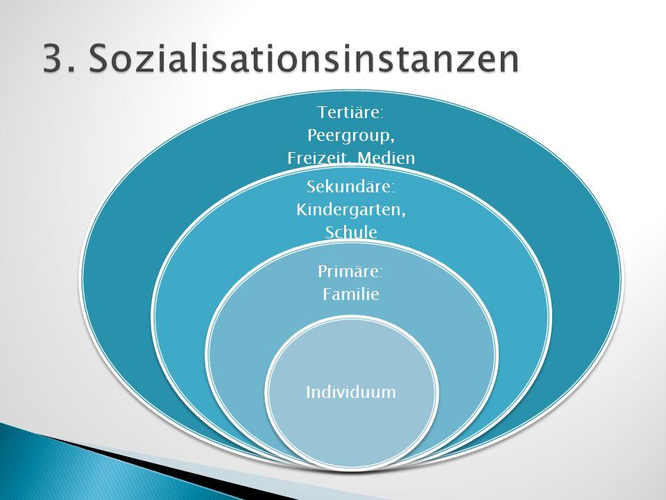 3. Sozialisationsinstanzen