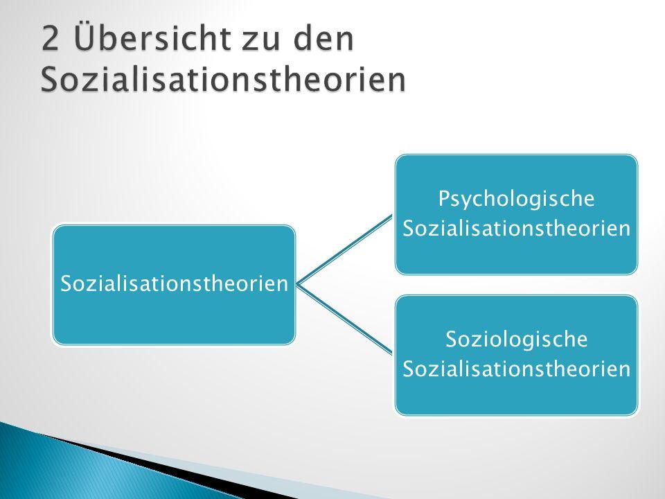 2 Übersicht zu den Sozialisationstheorien