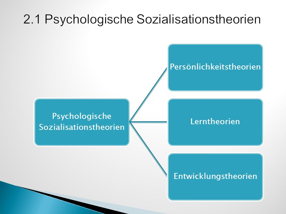 2.1 Psychologische Sozialisationstheorien