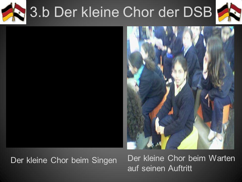 3.b Der kleine Chor der DSB