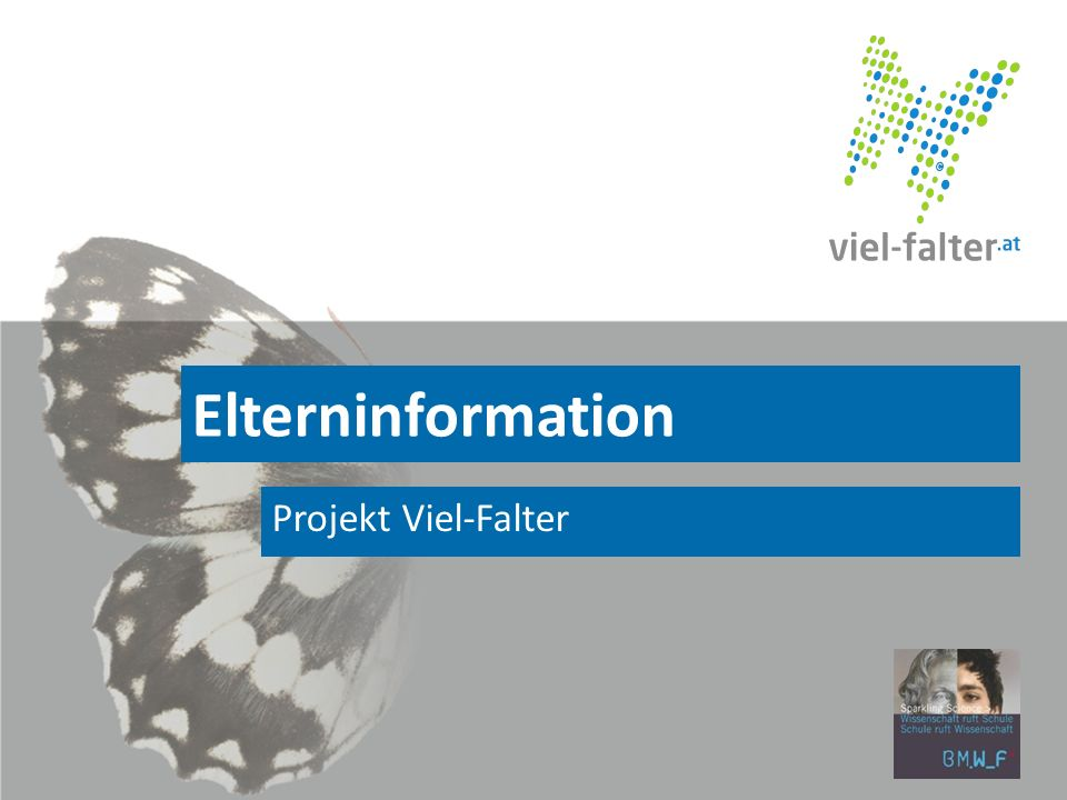 Elterninformation Projekt Viel-Falter