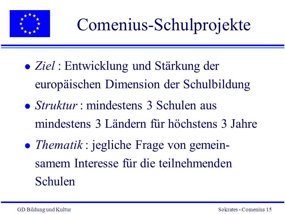 Comenius-Schulprojekte