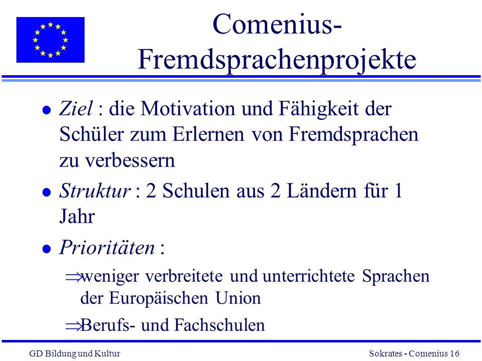 Comenius-Fremdsprachenprojekte