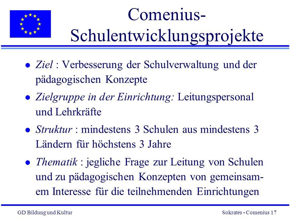 Comenius-Schulentwicklungsprojekte