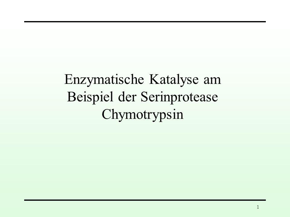 Enzymatische Katalyse am Beispiel der Serinprotease Chymotrypsin