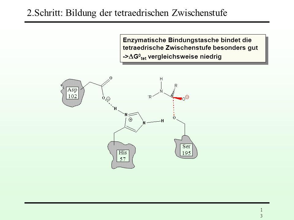 2.Schritt: Bildung der tetraedrischen Zwischenstufe
