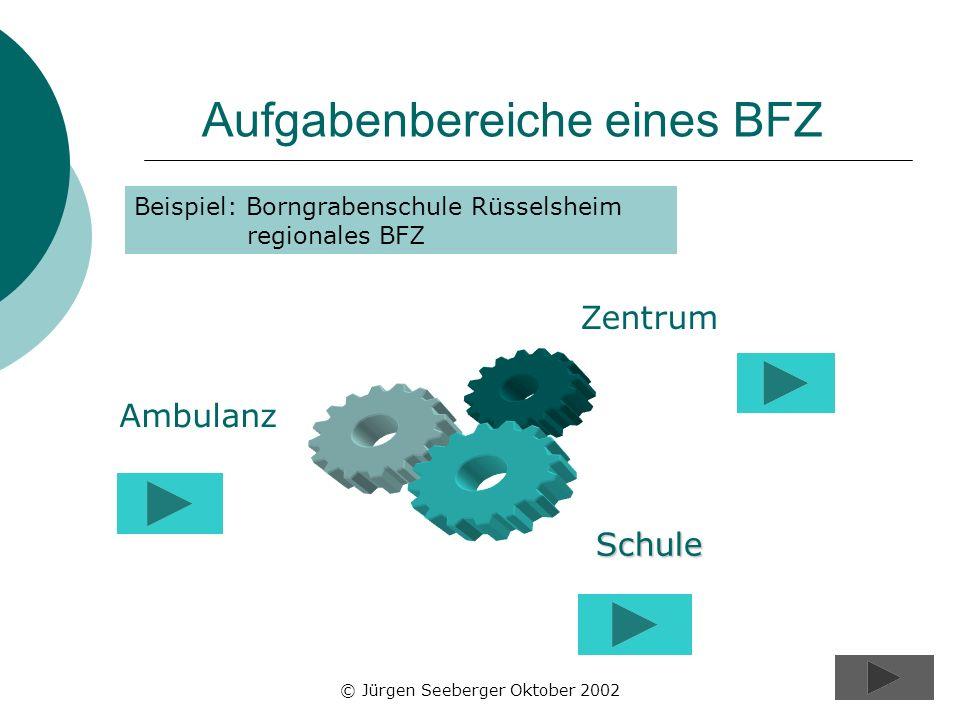 Aufgabenbereiche eines BFZ