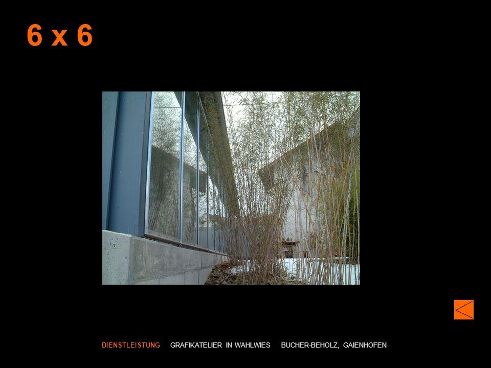 6 x 6 DIENSTLEISTUNG GRAFIKATELIER IN WAHLWIES BUCHER-BEHOLZ, GAIENHOFEN