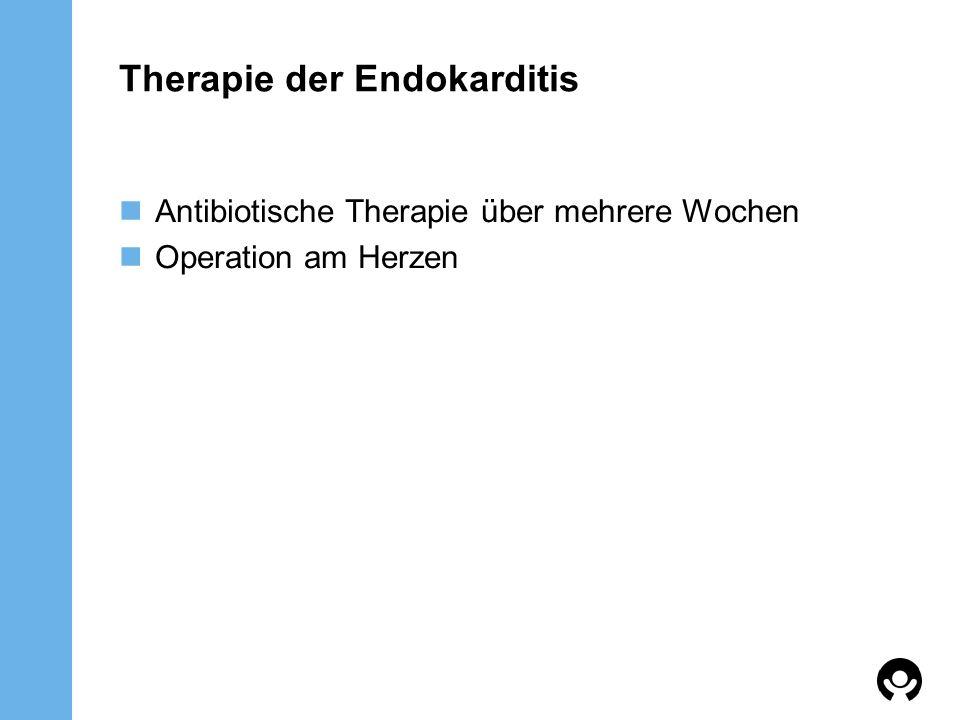 Therapie der Endokarditis
