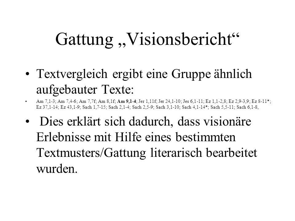 """Gattung """"Visionsbericht"""